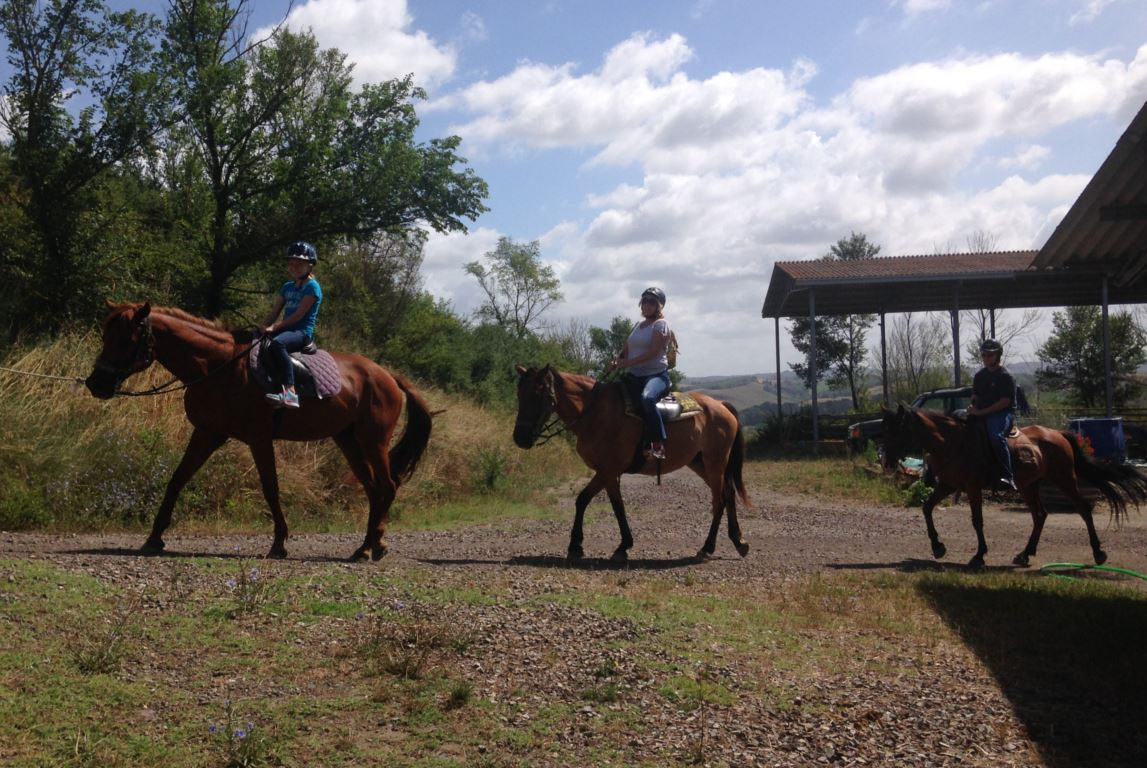 san fabiano activities - HORSEBACK TOUR