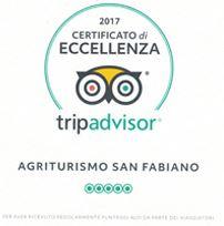 Toscana-Forum